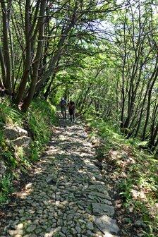 Sentiero lastricato per santuario Madonna del Fontegno