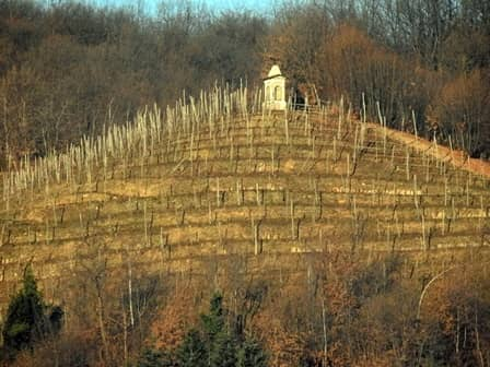 """Bricherasio (val Pellice """" To) Pilone posto a presidio di unl'area a vigneto"""